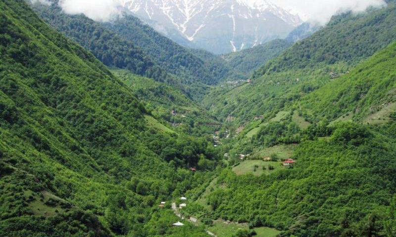 غابات 2000 و 3000 (محافظة مازندران)