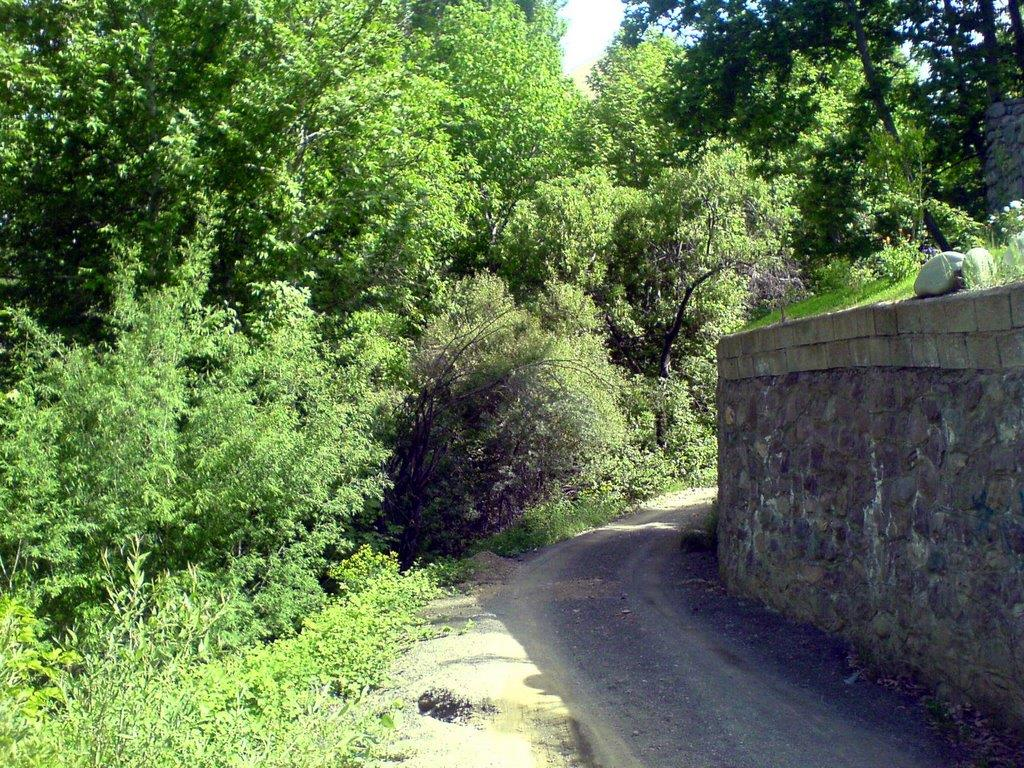 قرية كوردان