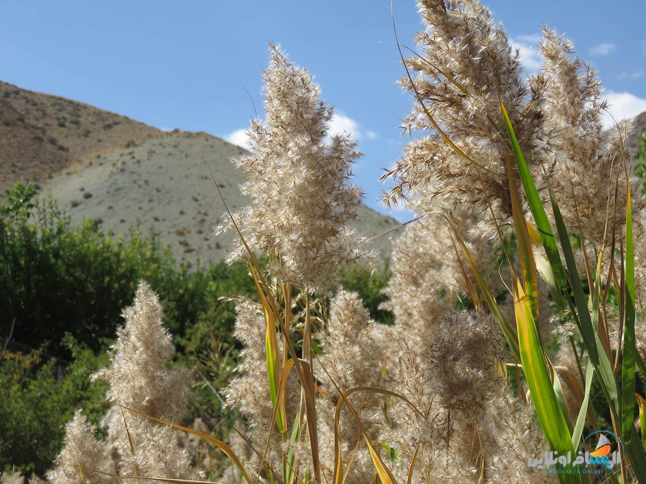 قرية هرانده في طهران
