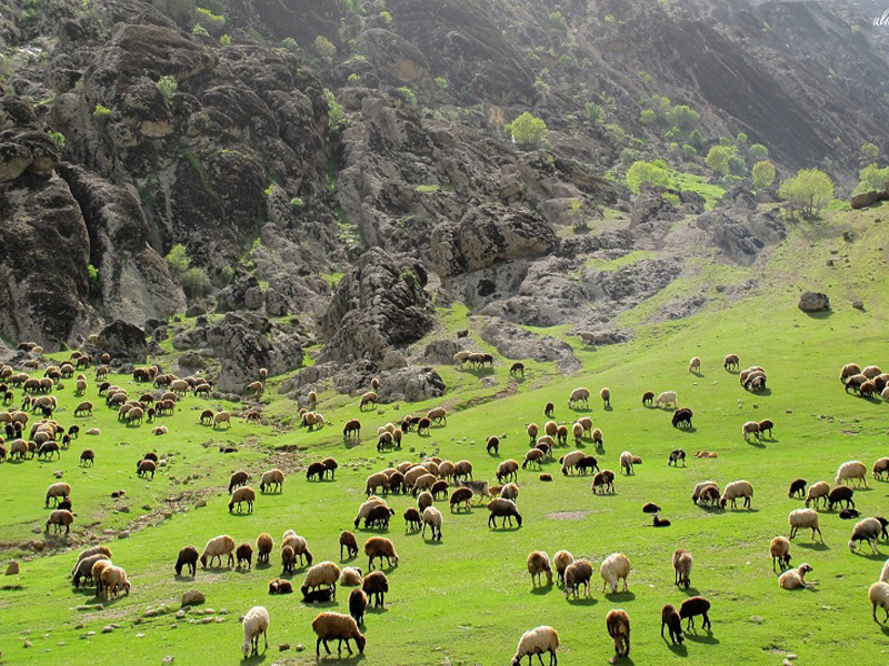 محافظة لرستان (خرم آباد)