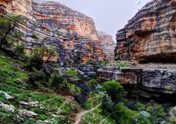 وادي شيراز