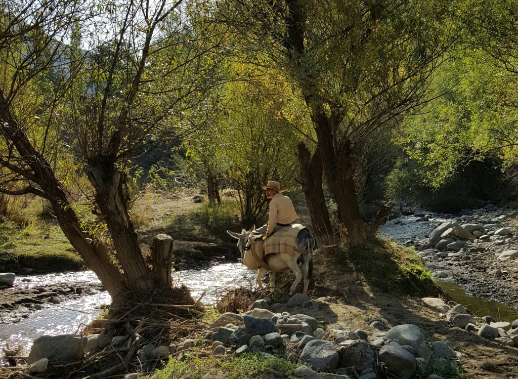 وادي طالقان