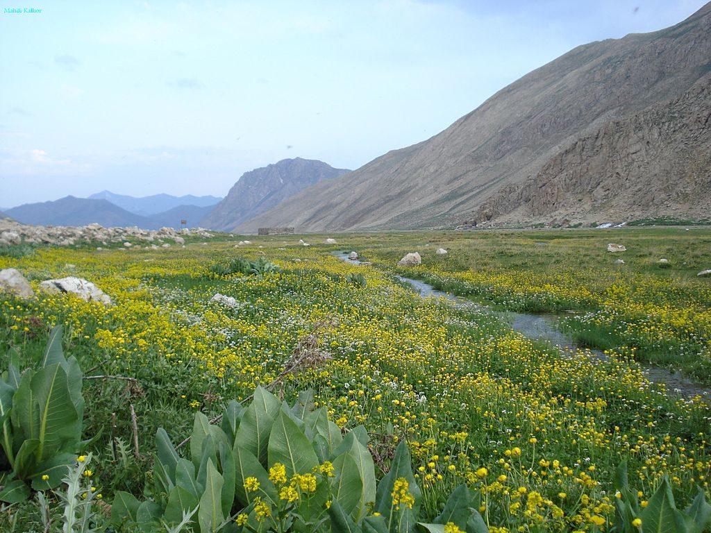 وادي لار