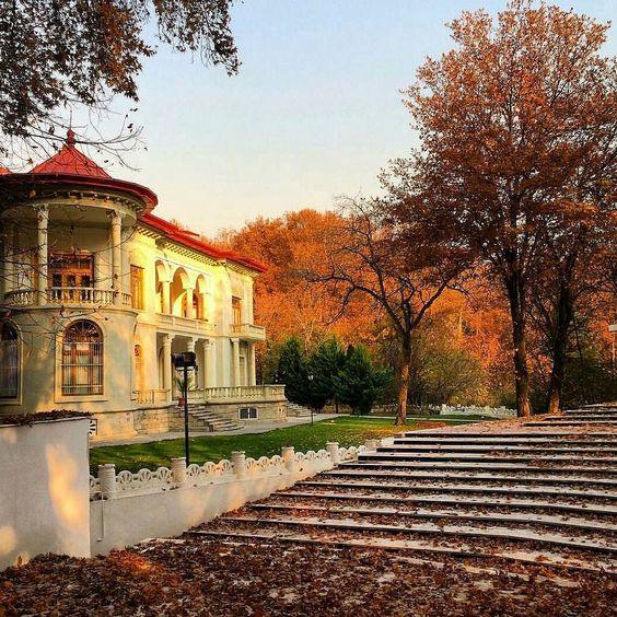 قصر سعد اباد