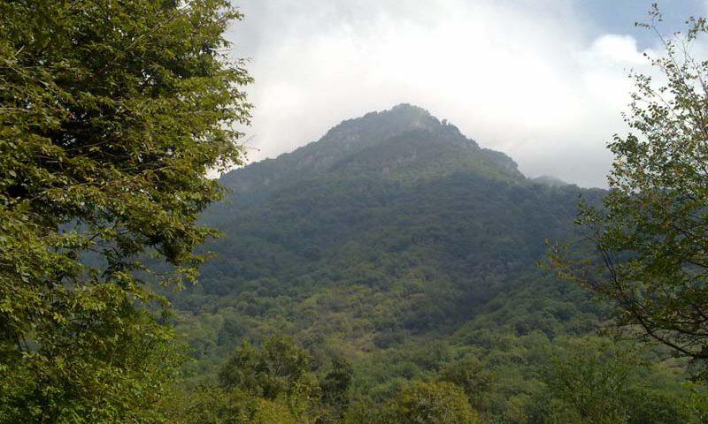 أجمل غابات إيران-غابة ألنكدره
