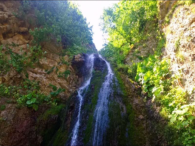 أجمل غابات إيران