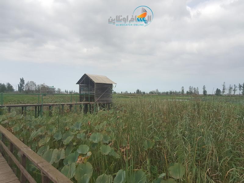 أول مركز للحياة البرية والطيور المهاجرة في جيلان