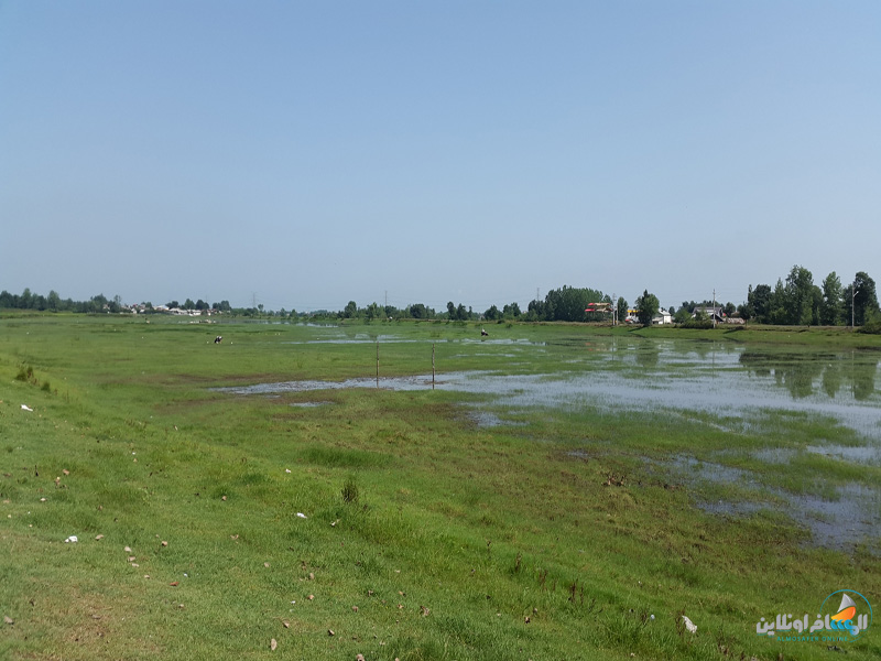 بحيرة كوملة في مقاطعة جيلان