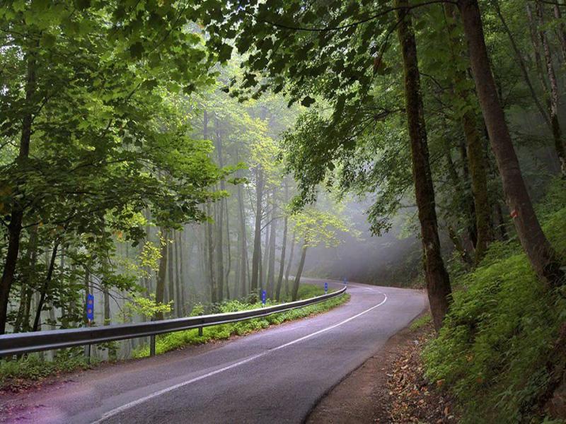 حديقة غابة صفاروود في رامسر