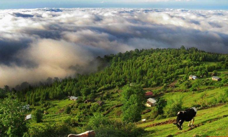 قرية كرديشال