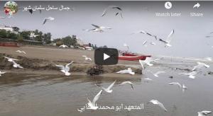 جمال شواطئ شمال إيران (مدينة سلمان شهر)
