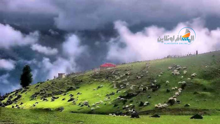 سهل النزة في مدينة مازندران شمال إيران