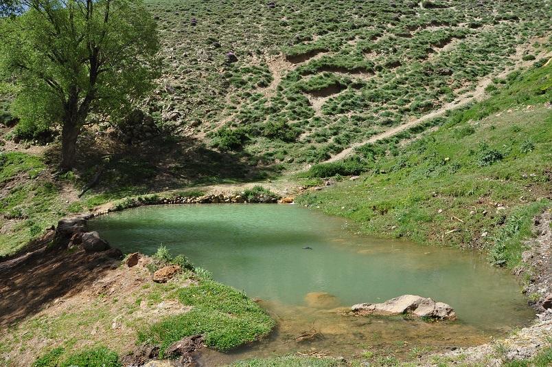 مياه لاريجان المعدنية