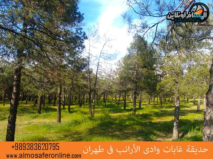 حديقة غابات وادي الأرانب في طهران