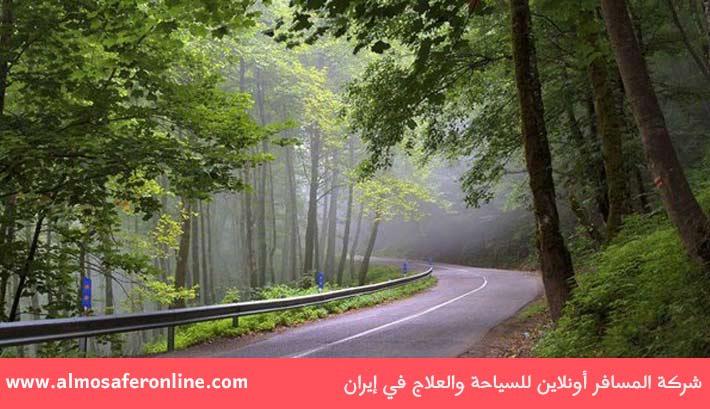 غابة الدلخاني في رامسر شمال إيران