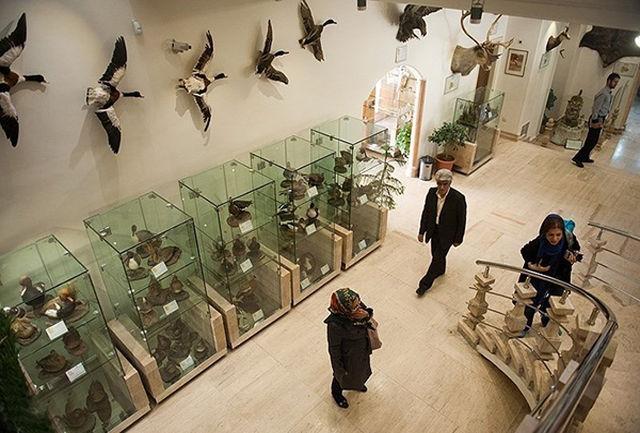 متحف دار أباد للحياة البرية