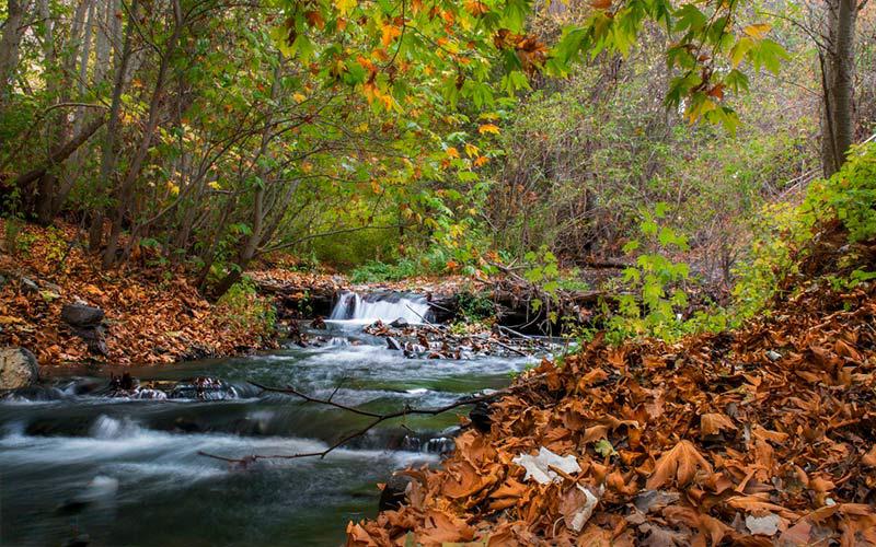 نهر ترقبة في مقاطعة خراسان